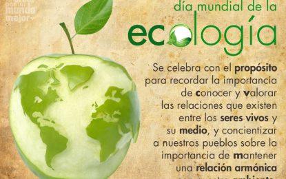 Martes, 1 de noviembre, Día mundial de la ecología y el ecólogo.