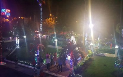 Gobernación de El Seibo ya encendió su árbol navideño.