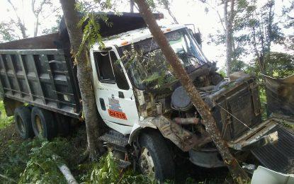 Camionero se estrella contra un árbol  por motoristas imprudentes