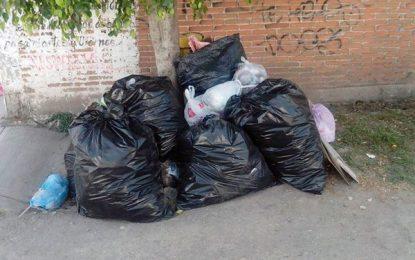 Habitantes de barrios de El Seibo se ahogan en la basura