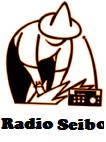 Rseybo-Logo