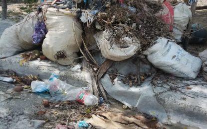Denuncian cúmulo de basura  en Pedro Sánchez