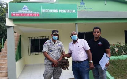 Ministerio de Medio Ambiente realiza operativo en el Cruce de Pavón